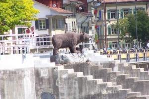 More Bears...