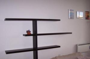 Cool Built in Shelves in Glasgow Apartment