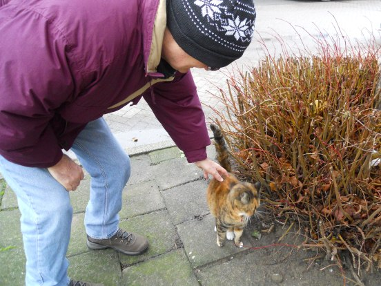 Matt makes a new kitty friend in Alphen
