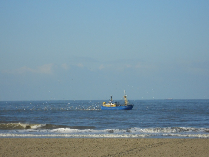 Check out the seagulls following the fishing boat.