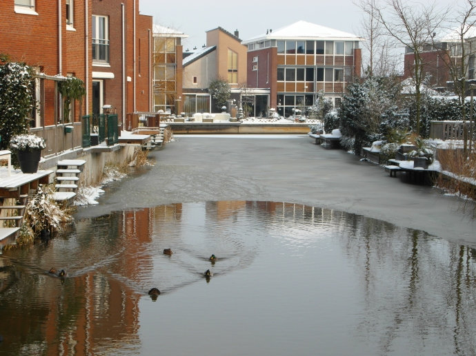 A bit of unfrozen canal for the birdies!